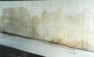 building surveyor to check for rising damp